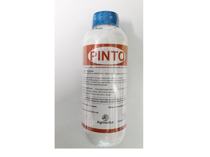 Pinto  50mil