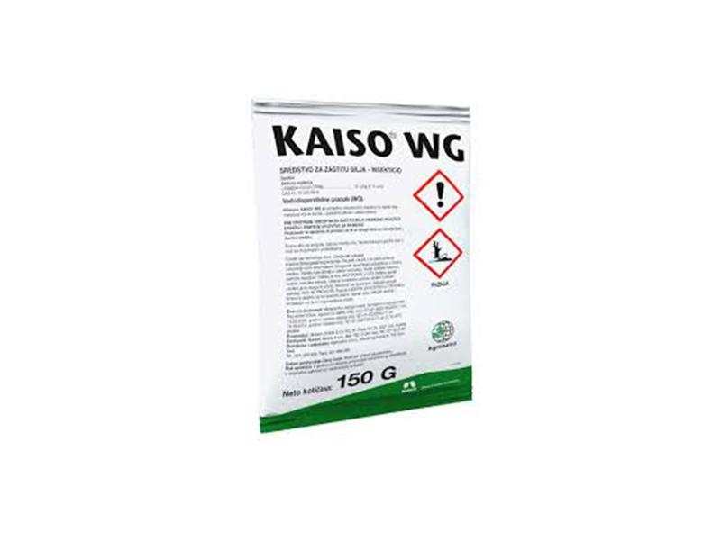 Kaiso WG  5g